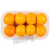 Clementiner i bakke