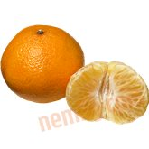 Clementin (stor)