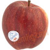 Æble royal gala øko.