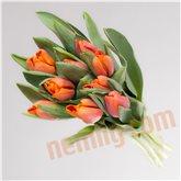 Tulipaner orange bdt.