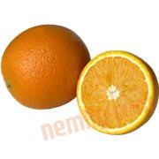 Citrus Frugt - Appelsin (stor)
