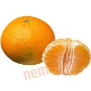 Citrus Frugt - Clementin øko.
