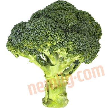 Broccoli - Grov Grønt