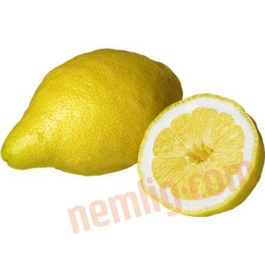 Citron - Citrus Frugt