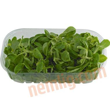 Feld salat - Salater