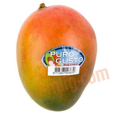 Mango (formodnet) - Eksotisk Frugt