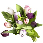 Blomster og tilbehør